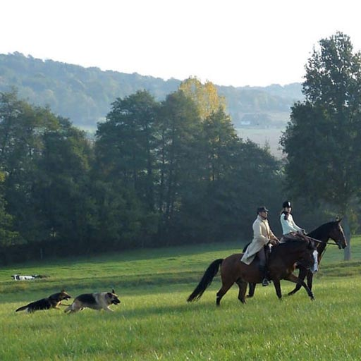 Le-Petit-Parquet_automne_randonnee-balade-equestre